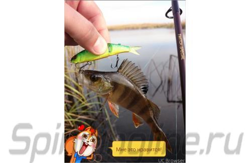 Jackall - Воблер Tiny Magallon matt tiger - фотография пользователя