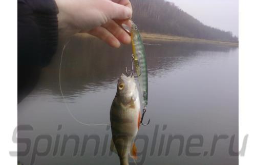 Воблер Lucky Craft Flash Minnow 130MR Ghost Sun Fish 246 - фотография загружена пользователем 1