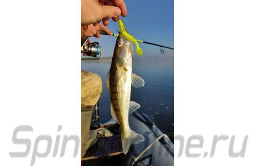 "Bass Assasin - Приманка Sea Shad 4"" SSA25319 - фотография пользователя"