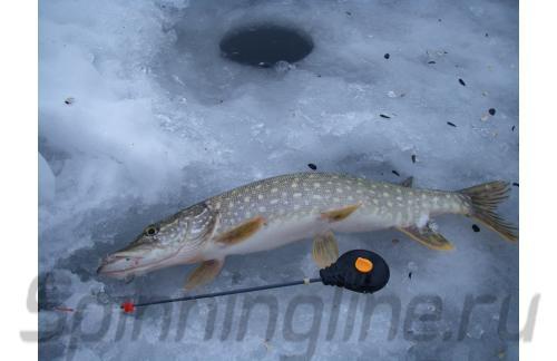 Удочка зимняя Shark Easy Drag оранжевый - фотография пользователя