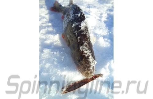 ECO - Блесна Alaskan 60 C - фотография пользователя