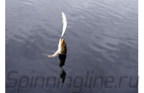 Воблер ZigZag Min 110F NSM5-014 - фотография загружена пользователем 1