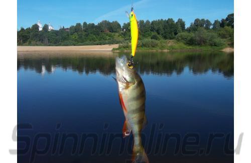 Fishycat - Воблер Libyca 50SP R16 - фотография пользователя