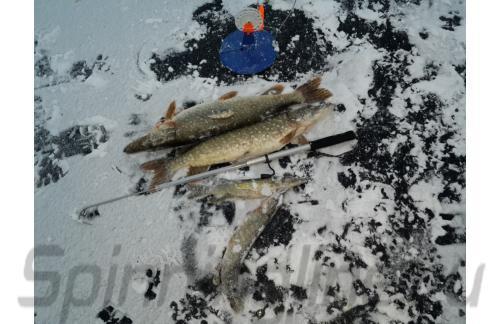 Багор Rapala для рыбалки 110см - фотография пользователя