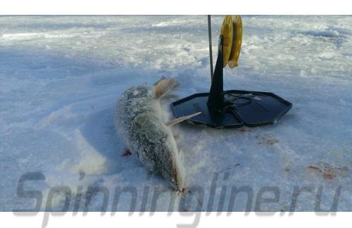 Жерлица зимняя Тонар - фотография пользователя