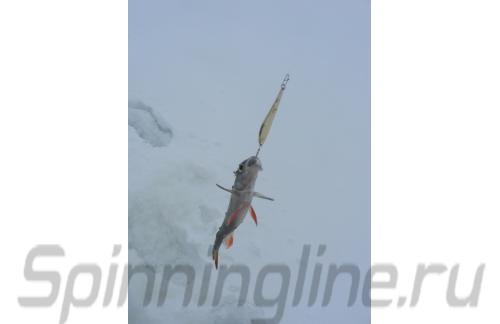 Salmo - Блесна LJ S-3-Z G с цепочкой и тройником - фотография пользователя