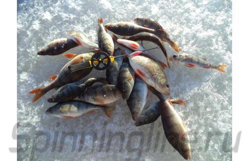 Bay De Noc - Do-Jigger 1 RedGlo - фотография пользователя