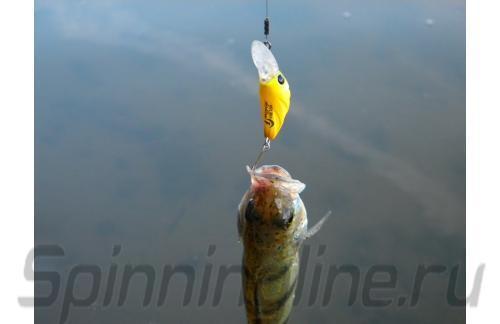 Воблер Micro Air Blow F 5942 Bana Mango 477 - фотография загружена пользователем 1