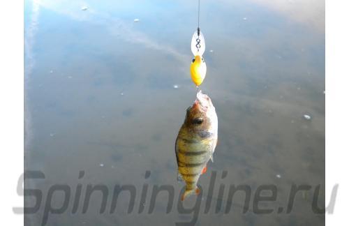 Воблер Micro Air Blow F 5942 Bana Mango 477 - фотография загружена пользователем 2