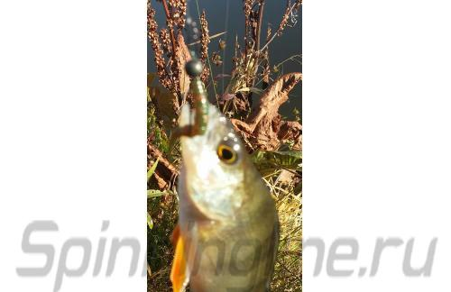 """Crazy Fish - Polaris 1.8"""" 10-3 - фотография пользователя"""