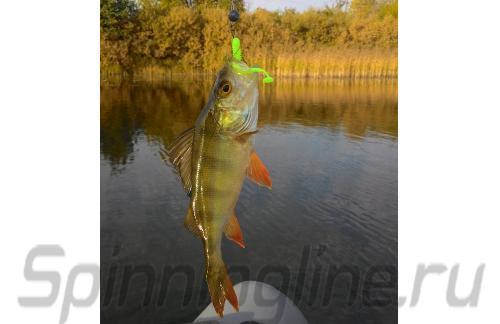 "Crazy Fish - Vibro Worm 2"" 6-5 - ���������� ������������"