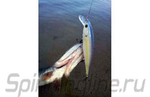 Lucky Craft - ������ Flash Pointer 115SP Chartreuse Shad 250 - ���������� ������������