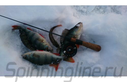 Катушка Stinger Arctic Char 60 - фотография пользователя