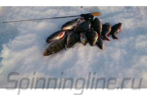 Stinger - Удочка зимняя Sensor Jig 2 - фотография пользователя
