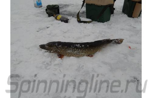 Ящик рыболовный A-Elita Comfort new - фотография загружена пользователем 1
