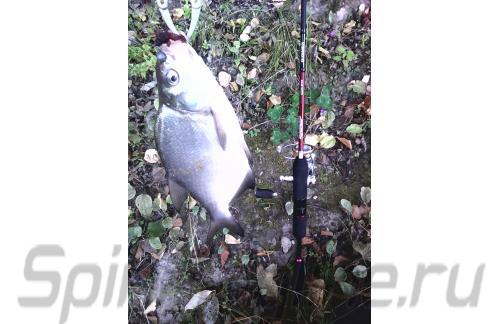 "Bait Breath - Mosya U30 1.5"" cola color 135 - ���������� ������������"