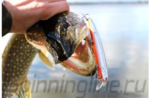 Воблер Pike Death 115SP A027 - фотография загружена пользователем 1