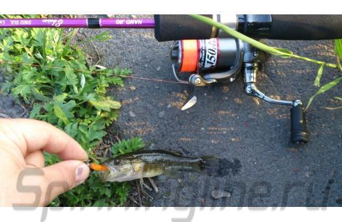 Crazy Fish - Спиннинг Ebisu Violet 602UL Nano Jig - фотография пользователя