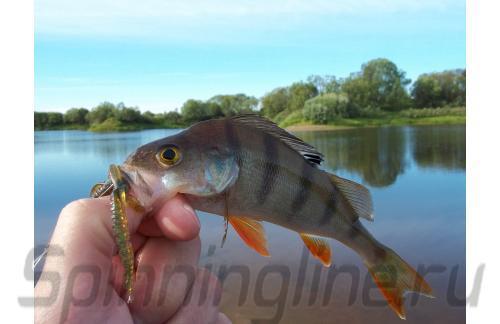 Приманка Hogy Shrimp 76/PA03 - фотография загружена пользователем 2