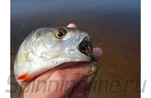 Приманка Hogy Shrimp 76/PA03 - фотография загружена пользователем 1