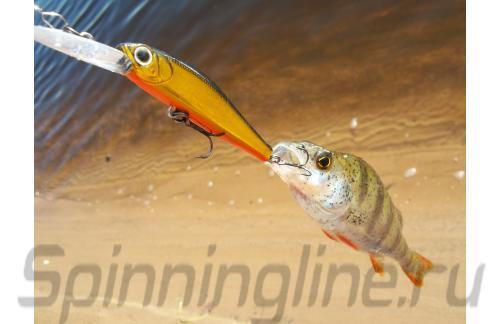 ZipBaits - Воблер Rigge Deep 56F 050 - фотография пользователя