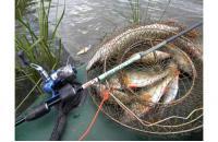 Extreme Fishing - Спиннинг Grace Obsession 662UL - фотография пользователя