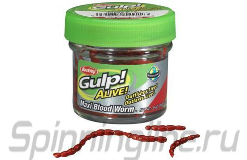 Berkley - Gulp Alive Maxi Blood Worms blood red - ���������� ������������