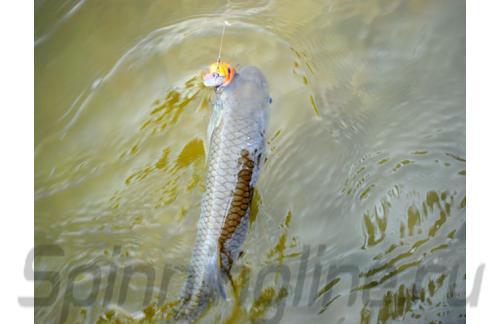 Fishycat - Воблер Icat 32F-DR X12 - фотография пользователя