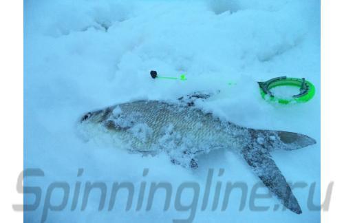 Пирс Мастер - Удочка зимняя WH 50B L 150 зеленый/серый - фотография пользователя