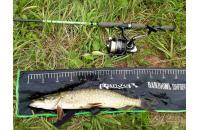 Trout Pro - Воблер Deep Shad 70F 010 - фотография пользователя