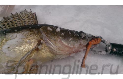 Поролоновая рыбка Окунева 7Б-1 - фотография загружена пользователем 1
