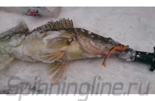 Окунев Владимир - Поролоновая рыбка Окунева 7В-1 - фотография пользователя