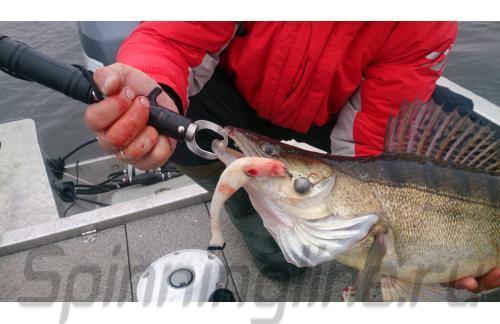 Поролоновая рыбка Окунева 3Б-2П - фотография загружена пользователем 1