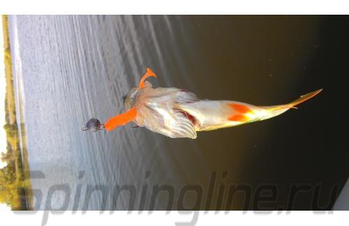 """Crazy Fish - Приманка Vibro Worm 2"""" 64-6 - фотография пользователя"""