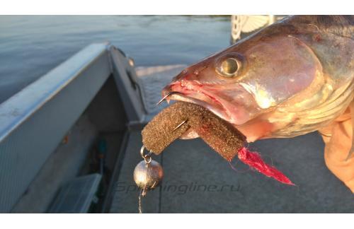 Окунев Владимир - Поролоновая рыбка Окунева Z-7 - фотография пользователя