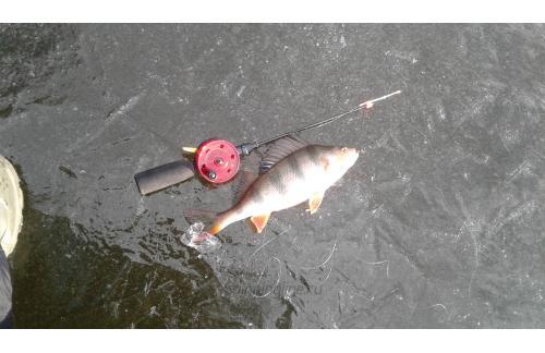 Удочка зимняя Lucky John LDR 34см - фотография загружена пользователем 1
