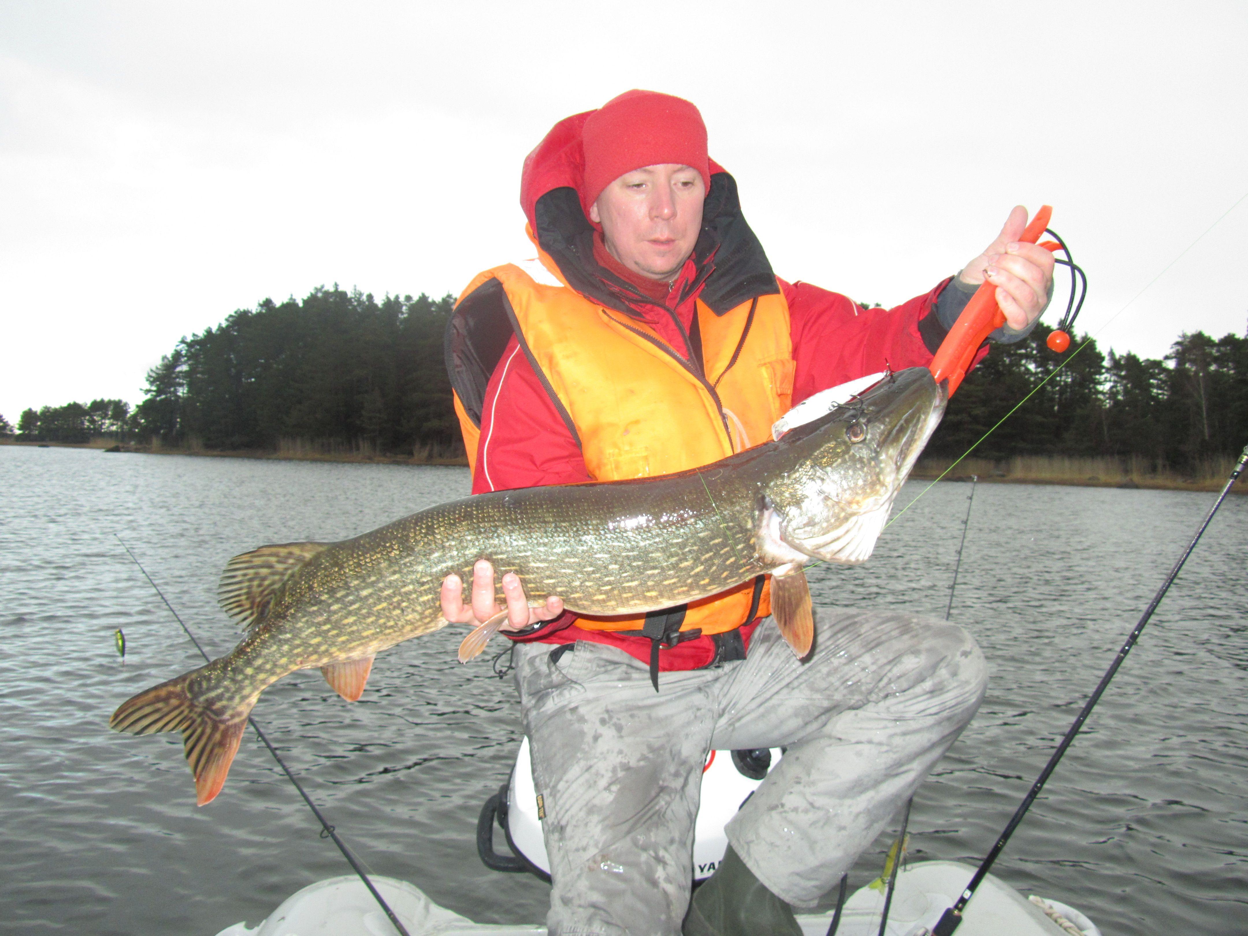 на рыбалку как ловить спиннингом
