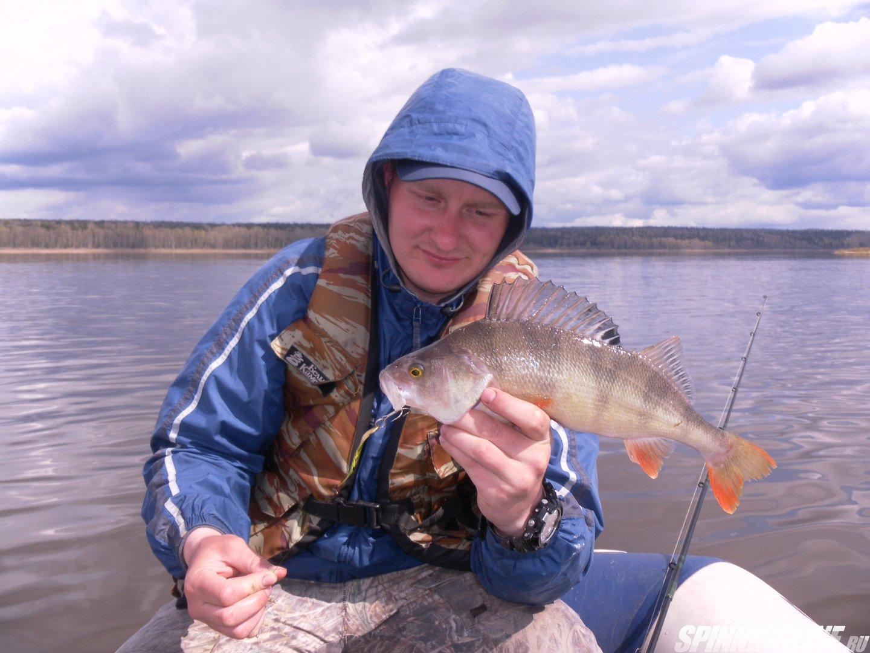 рыбалка у бородина на форуме рыбалка без границ