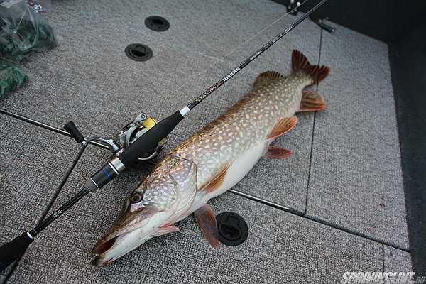 Рыбалка при похолодании
