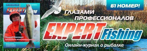 Expert Fishing_конец