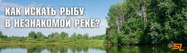 Изображение 1 : Как искать рыбу в незнакомой реке?