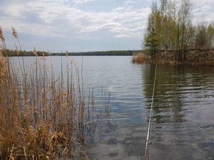 Изображение 1 : Особенности ловли с берега на спиннинг