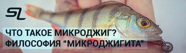 Изображение 1 : Что такое микроджиг? Философия {amp}quot;микроджигита{amp}quot;.