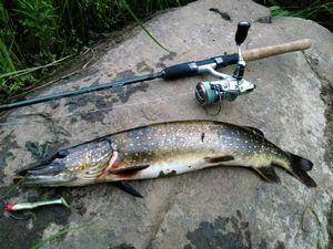 Изображение 4 : Ловля щуки на неогруженную резину на малой реке
