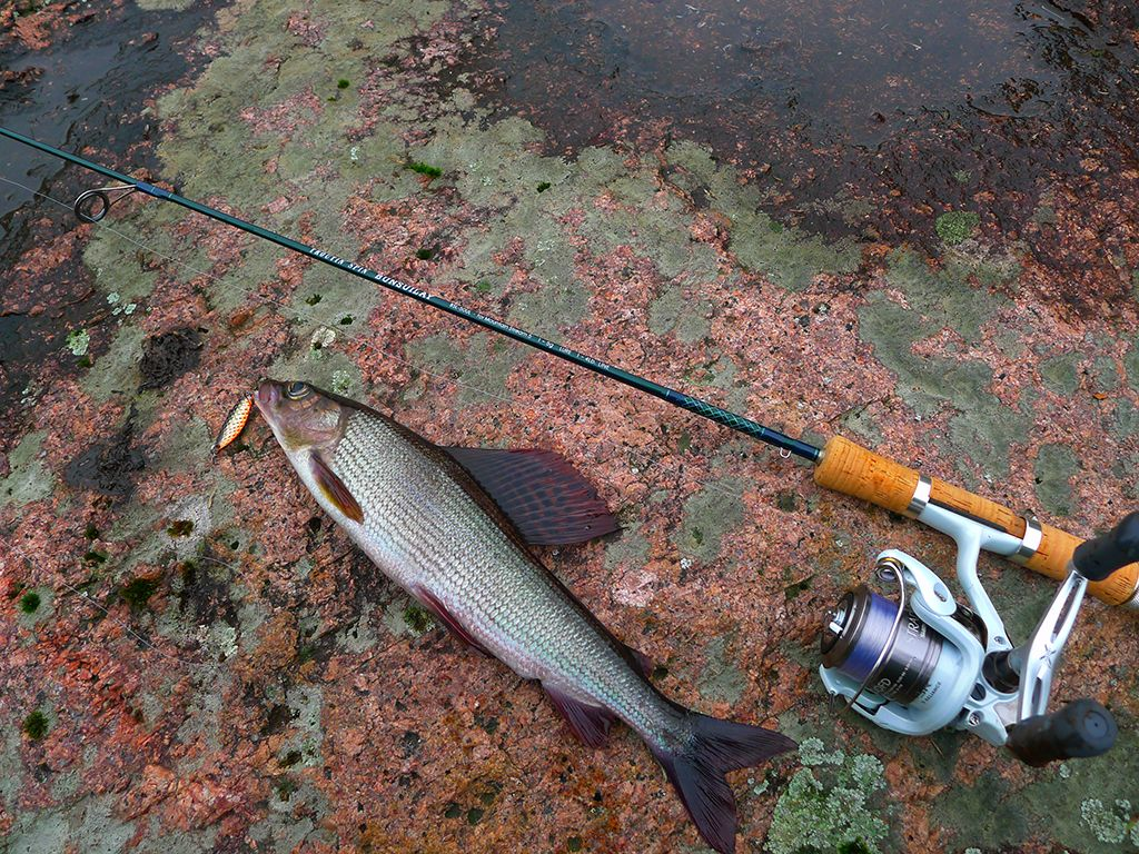 Самоделки для летней рыбалки