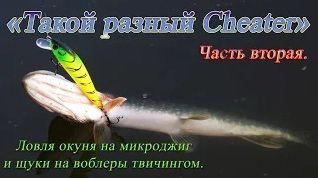 Твичинг - обучающая видео программа онлайн – Рыбалка - Информационно развлекательный портал