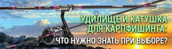 spinningline.ru/uploads/images/carp_ban_19092017.jpg