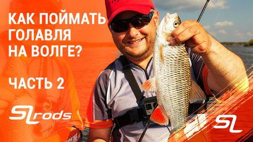 spinningline.ru/uploads/images/golavl2_01102019.jpg