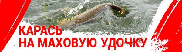 spinningline.ru/uploads/images/karas_07062019.jpg