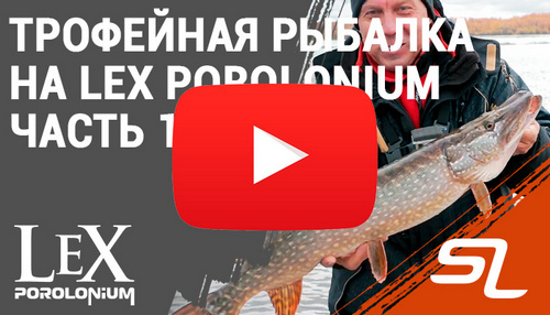 lex_video_26042019.jpg